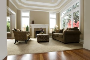 carpet cleaning bakersfield carpet savvy
